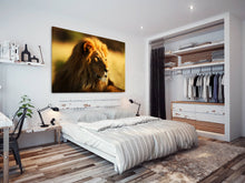 A099 Framed Canvas Print Colourful Modern Animal Wall Art - Yellow Lion Cool Big Cat-Canvas Print-WhatsOnYourWall