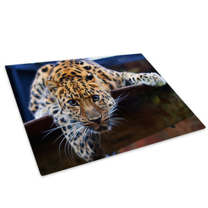 Orange Tiger Cool White Glass Chopping Board Kitchen Worktop Saver Protector - A100-Animal Chopping Board-WhatsOnYourWall