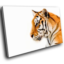 A101 Framed Canvas Print Colourful Modern Animal Wall Art - Orange Tiger White Cool-Canvas Print-WhatsOnYourWall