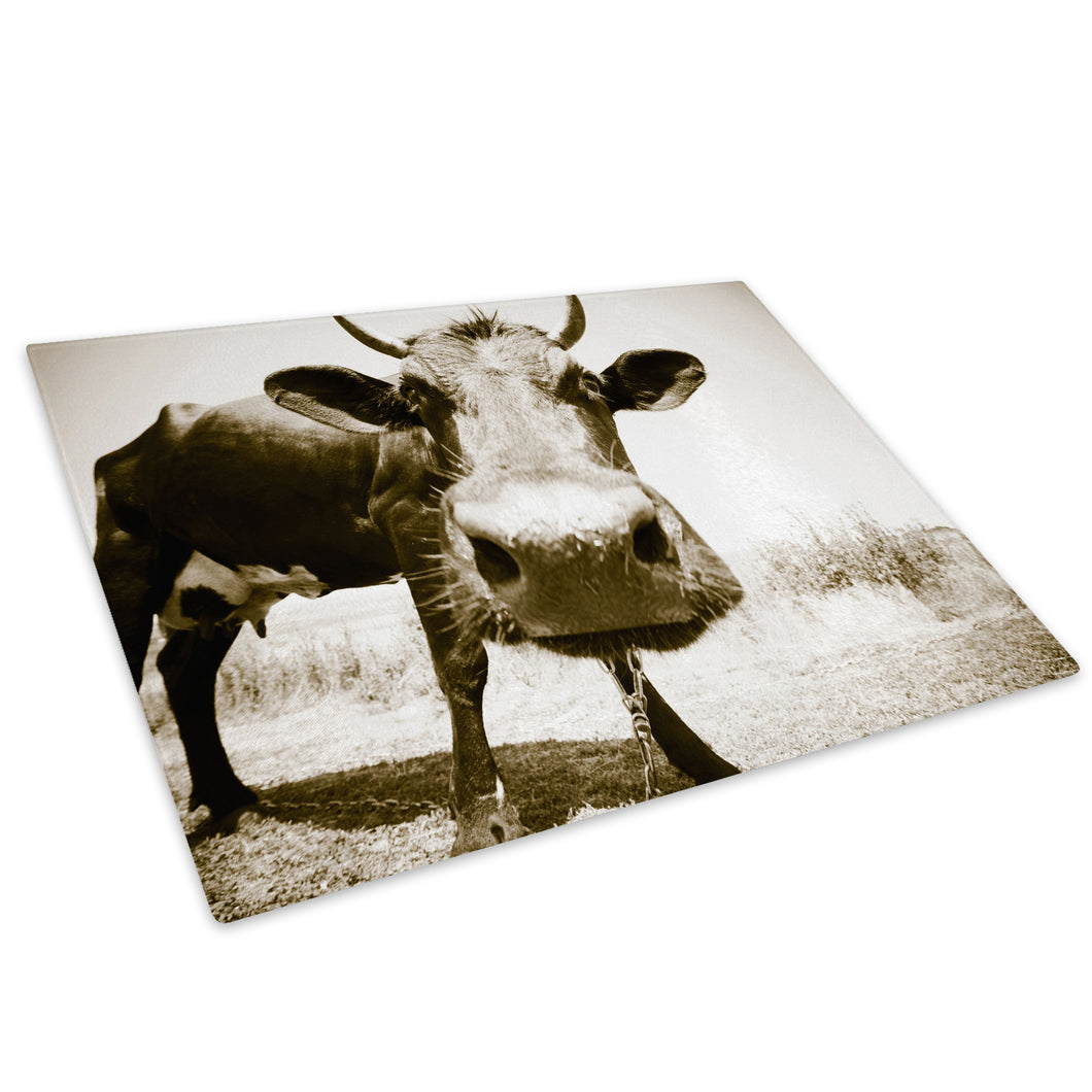 Sepia Cow Cool Farm Brown Glass Chopping Board Kitchen Worktop Saver Protector - A104