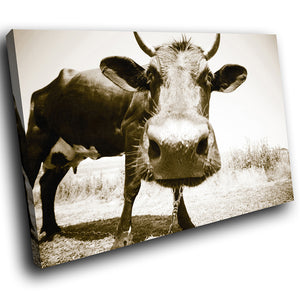 A104 Framed Canvas Print Colourful Modern Animal Wall Art - Sepia Cow Cool Farm Brown-Canvas Print-WhatsOnYourWall