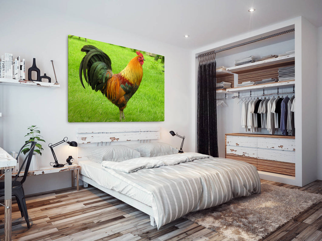 A116 Framed Canvas Print Colourful Modern Animal Wall Art - Green Cock Chicken Field-Canvas Print-WhatsOnYourWall