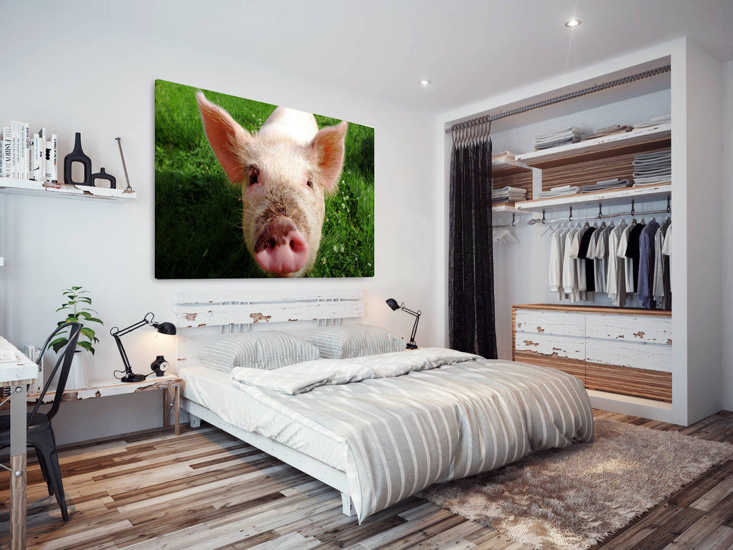 A118 Framed Canvas Print Colourful Modern Animal Wall Art - Pink Pig Piglet Green Field-Canvas Print-WhatsOnYourWall