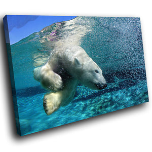 A123 Framed Canvas Print Colourful Modern Animal Wall Art - Blue White Polar Bear Swimming-Canvas Print-WhatsOnYourWall