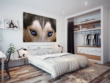A125 Framed Canvas Print Colourful Modern Animal Wall Art - Grey White Wolf Blue Eyes-Canvas Print-WhatsOnYourWall