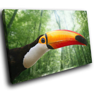 A129 Framed Canvas Print Colourful Modern Animal Wall Art - Orange Beak Toucan Forest-Canvas Print-WhatsOnYourWall