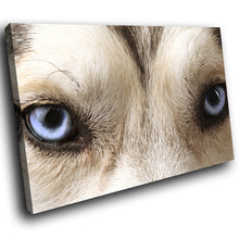 A131 Framed Canvas Print Colourful Modern Animal Wall Art - Grey White Wolf Blue Eyes-Canvas Print-WhatsOnYourWall