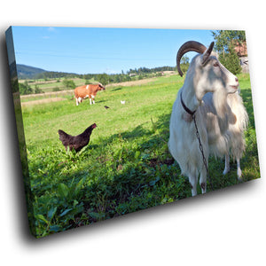 A138 Framed Canvas Print Colourful Modern Animal Wall Art -  Green Fields Chicken Goat - WhatsOnYourWall