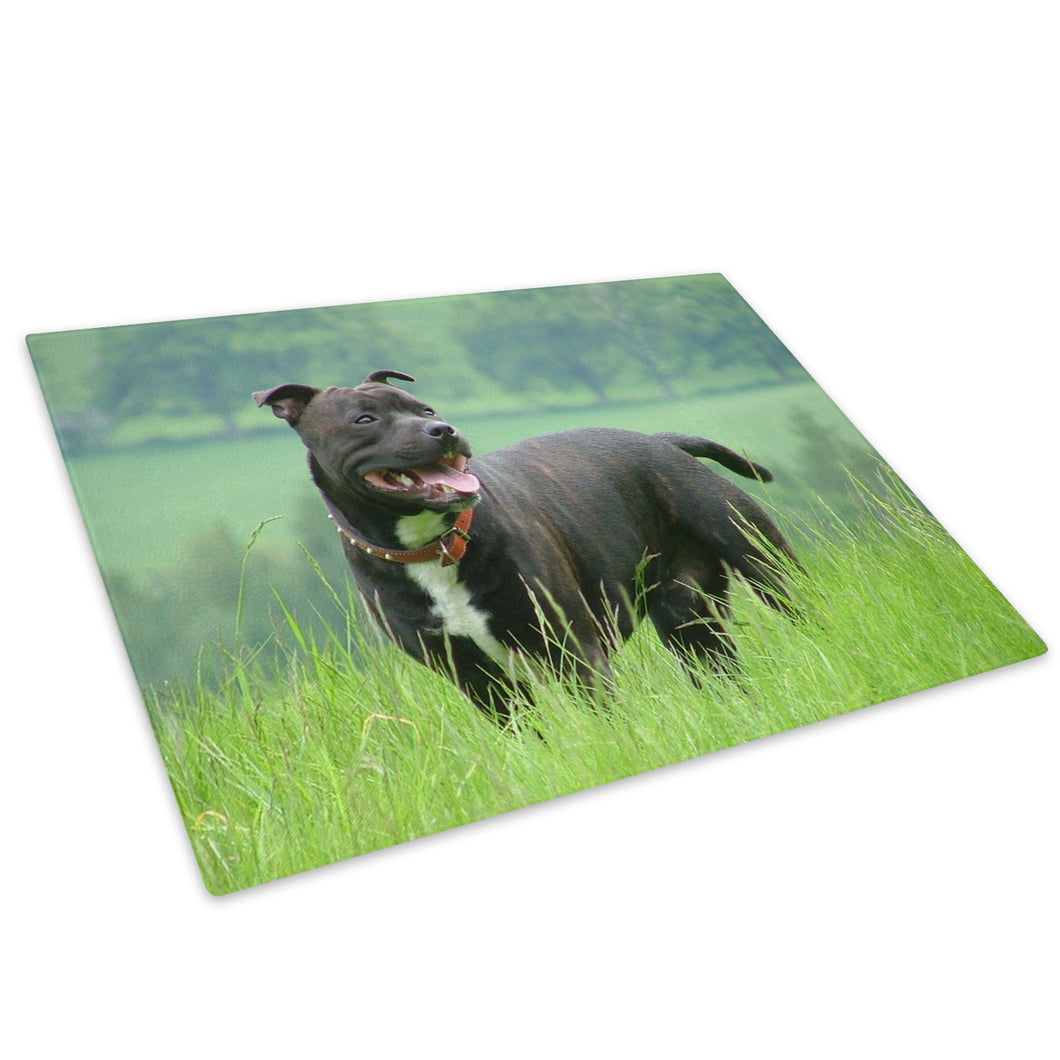 Black Bull Terrier Green Glass Chopping Board Kitchen Worktop Saver Protector - A148-Animal Chopping Board-WhatsOnYourWall
