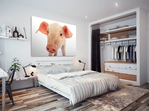 A167 Framed Canvas Print Colourful Modern Animal Wall Art - Pink White Baby Pig Piglet-Canvas Print-WhatsOnYourWall
