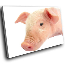 A168 Framed Canvas Print Colourful Modern Animal Wall Art - Pink White Baby Pig Piglet-Canvas Print-WhatsOnYourWall