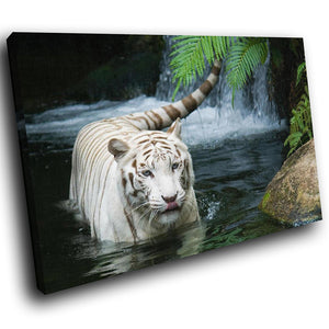 A183 Framed Canvas Print Colourful Modern Animal Wall Art - White Bengal Tiger Lake-Canvas Print-WhatsOnYourWall