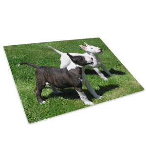 Black White Bull Terrier  Glass Chopping Board Kitchen Worktop Saver Protector - A189