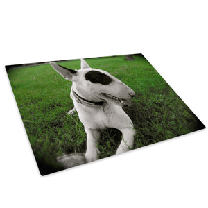 White Bull Terrier Dog Glass Chopping Board Kitchen Worktop Saver Protector - A193-Animal Chopping Board-WhatsOnYourWall