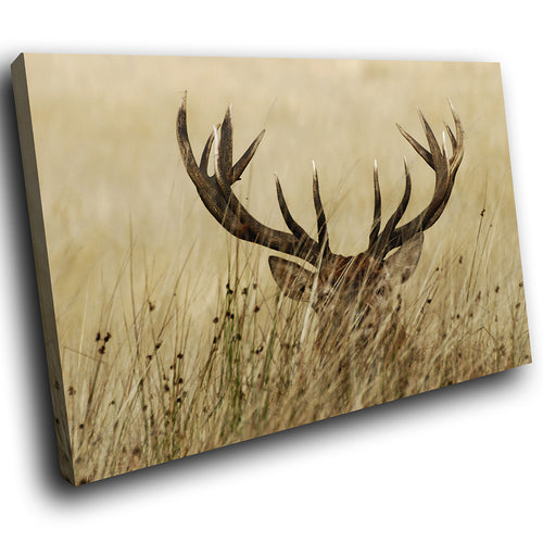 A198 Framed Canvas Print Colourful Modern Animal Wall Art - Brown Stag Tall Grass-Canvas Print-WhatsOnYourWall