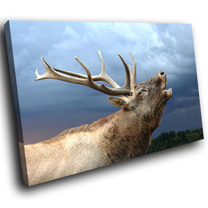 A203 Framed Canvas Print Colourful Modern Animal Wall Art - Moose Howling Blue Sky-Canvas Print-WhatsOnYourWall