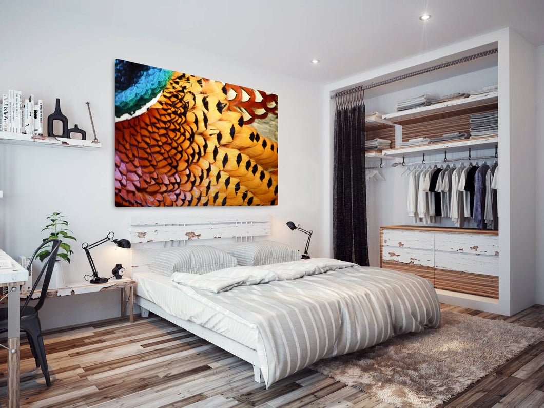 A206 Framed Canvas Print Colourful Modern Animal Wall Art -  Yellow Red Blue Feather Pattern - WhatsOnYourWall