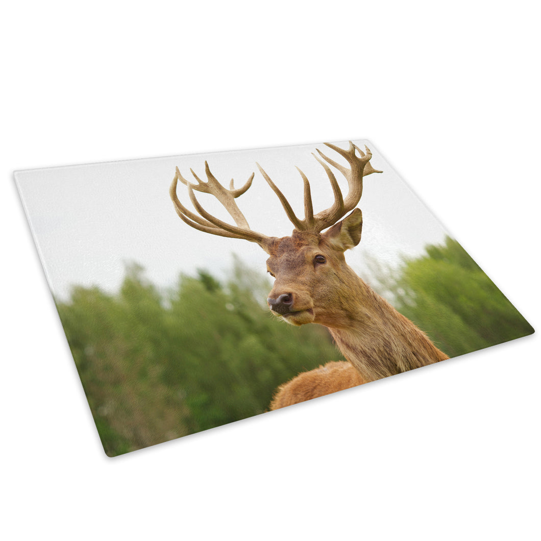 Brown Deer Sunset Forest Glass Chopping Board Kitchen Worktop Saver Protector - A214-Animal Chopping Board-WhatsOnYourWall