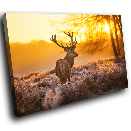A217 Framed Canvas Print Colourful Modern Animal Wall Art - Yellow Winter Landscape Stag-Canvas Print-WhatsOnYourWall