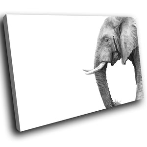 A224 Framed Canvas Print Colourful Modern Animal Wall Art - Grey White Elephant Face Trunk-Canvas Print-WhatsOnYourWall