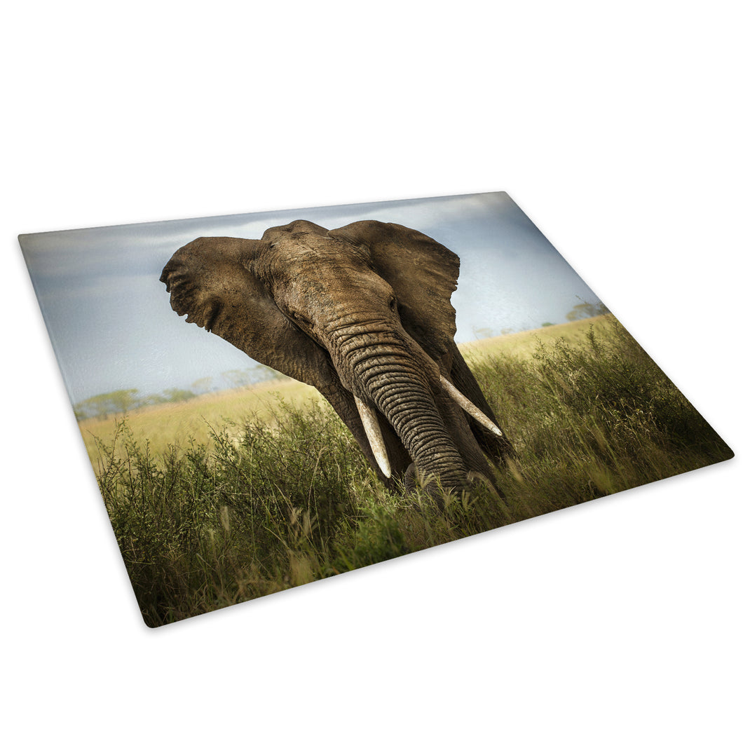 Green Elephant Blue Africa Glass Chopping Board Kitchen Worktop Saver Protector - A226-Animal Chopping Board-WhatsOnYourWall
