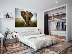 A226 Framed Canvas Print Colourful Modern Animal Wall Art -  Green Indian Elephant - WhatsOnYourWall