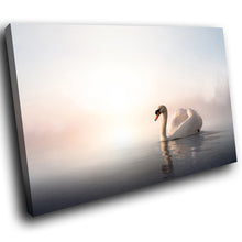 A227 Framed Canvas Print Colourful Modern Animal Wall Art - White Pink Swan Lake Mist-Canvas Print-WhatsOnYourWall