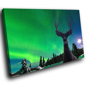 A228 Framed Canvas Print Colourful Modern Animal Wall Art - Northern Lights Winter Deer-Canvas Print-WhatsOnYourWall