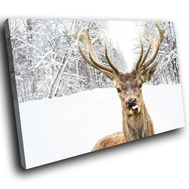 A234 Framed Canvas Print Colourful Modern Animal Wall Art - White Winter Stag Deer-Canvas Print-WhatsOnYourWall