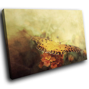 A239 Framed Canvas Print Colourful Modern Animal Wall Art -  Vintage Glanville Butterfly - WhatsOnYourWall