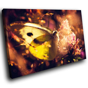 A242 Framed Canvas Print Colourful Modern Animal Wall Art - Brown Purple Butterfly Feeding-Canvas Print-WhatsOnYourWall
