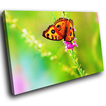A245 Framed Canvas Print Colourful Modern Animal Wall Art - Orange Butterfly On Flower Stem-Canvas Print-WhatsOnYourWall