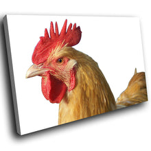 A247 Framed Canvas Print Colourful Modern Animal Wall Art -  Farm Animal Leghorn Rooster - WhatsOnYourWall