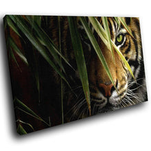 A260 Framed Canvas Print Colourful Modern Animal Wall Art -  Hidden In Grass Bengal Tiger - WhatsOnYourWall