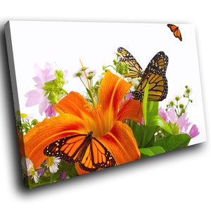 A263 Framed Canvas Print Colourful Modern Animal Wall Art - Monarch Butterfly Orange Flower-Canvas Print-WhatsOnYourWall