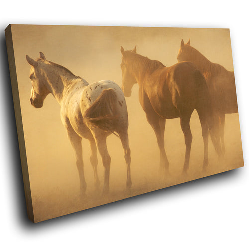 A268 Framed Canvas Print Colourful Modern Animal Wall Art - Wild Brown Stallions Dust Storm-Canvas Print-WhatsOnYourWall