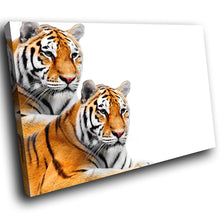 A269 Framed Canvas Print Colourful Modern Animal Wall Art - Two Bengal Tigers Lounging-Canvas Print-WhatsOnYourWall