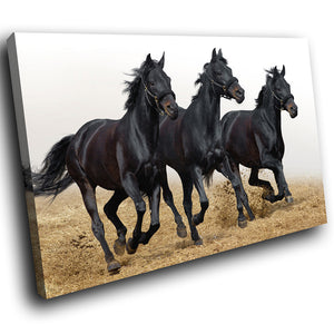 A270 Framed Canvas Print Colourful Modern Animal Wall Art - Three Black Wild Stallions-Canvas Print-WhatsOnYourWall