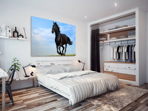A271 Framed Canvas Print Colourful Modern Animal Wall Art -  Wild Stallion Gallop Blue Sky - WhatsOnYourWall