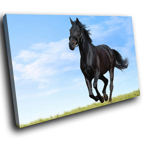 A271 Framed Canvas Print Colourful Modern Animal Wall Art - Wild Stallion Gallop Blue Sky-Canvas Print-WhatsOnYourWall