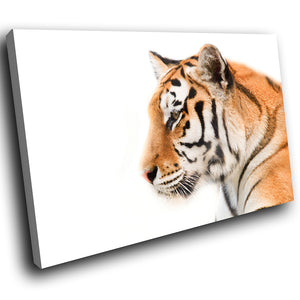 A274 Framed Canvas Print Colourful Modern Animal Wall Art -  Bengal Tiger Predator Gaze - WhatsOnYourWall