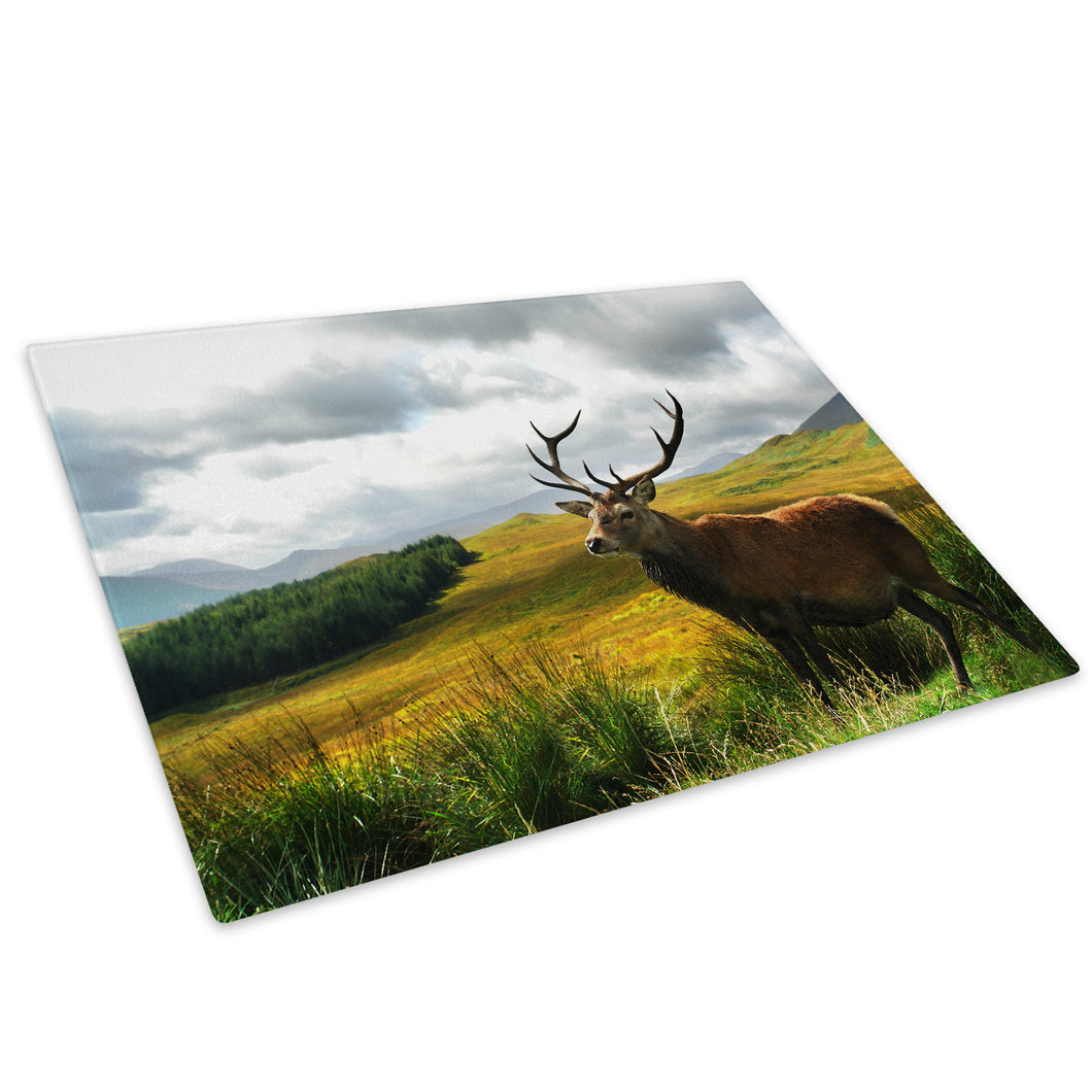 Brown Stag Green Yellow Glass Chopping Board Kitchen Worktop Saver Protector - A275