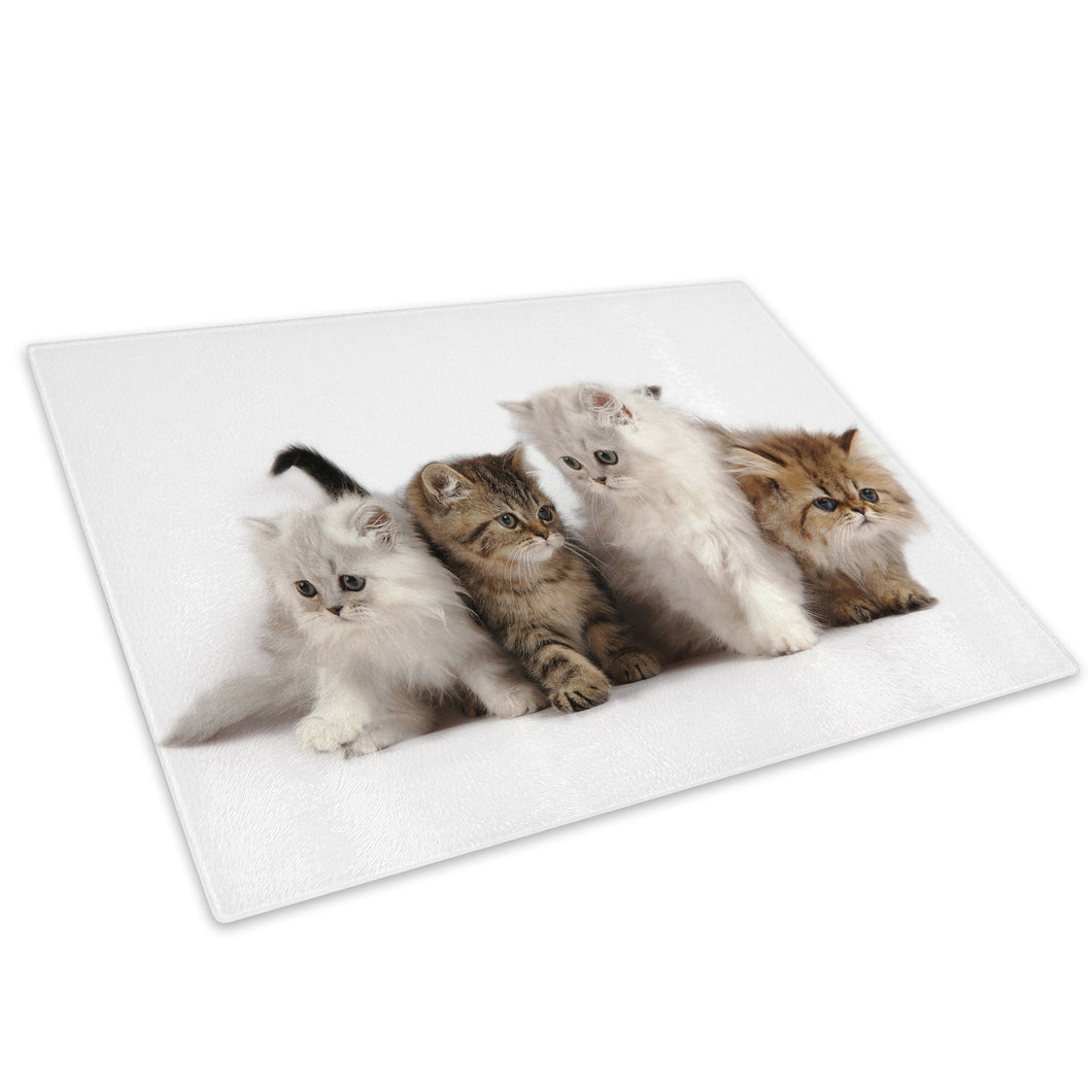Kittens Cat White Brown Glass Chopping Board Kitchen Worktop Saver Protector - A277-Animal Chopping Board-WhatsOnYourWall