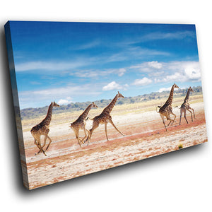 A278 Framed Canvas Print Colourful Modern Animal Wall Art - African Plain Herd Of Giraffe-Canvas Print-WhatsOnYourWall