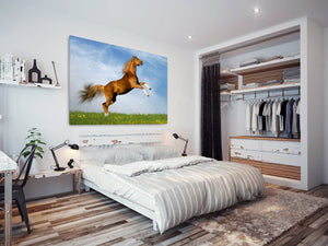 A280 Framed Canvas Print Colourful Modern Animal Wall Art -  Brown Stallion Rearing Grass - WhatsOnYourWall