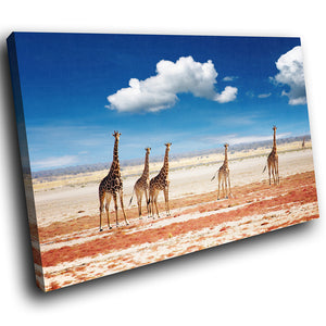 A285 Framed Canvas Print Colourful Modern Animal Wall Art -  Africa Herd Reticulated Giraffe - WhatsOnYourWall