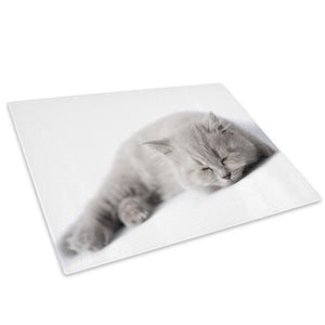 Grey Cat Kitten White Cool Glass Chopping Board Kitchen Worktop Saver Protector - A289-Animal Chopping Board-WhatsOnYourWall