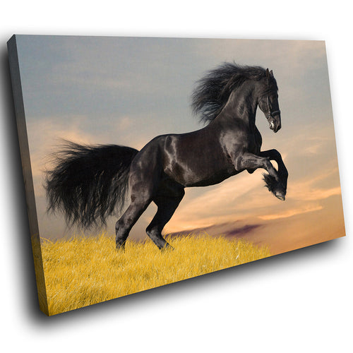 A291 Framed Canvas Print Colourful Modern Animal Wall Art - Wild Black Stallion Leaping-Canvas Print-WhatsOnYourWall