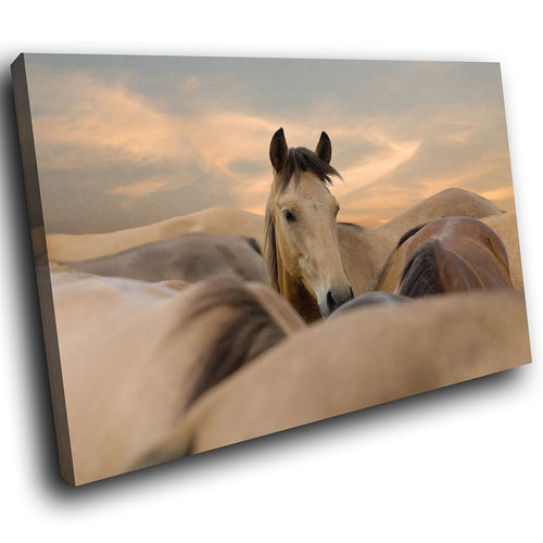 A293 Framed Canvas Print Colourful Modern Animal Wall Art - Herd Of Brown Stallions Horses-Canvas Print-WhatsOnYourWall