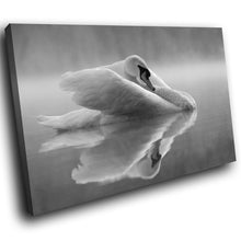 A296 Framed Canvas Print Colourful Modern Animal Wall Art - Grey Angelic Graceful Swan Lake-Canvas Print-WhatsOnYourWall